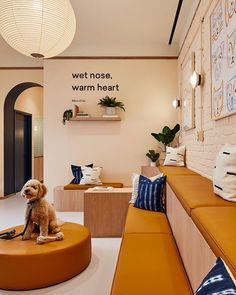 "Islyn Studio Design pour Bond Vet - Design Milk - Islyn Studio Design pour Bond Vet … ""Islyn Studio Design pour Bond Vet … You are in the right - Dog Grooming Shop, Dog Grooming Salons, Pet Cafe, Dog Spa, Dog Milk, Pet Hotel, Hospital Design, Pet Hospital, Vet Clinics"