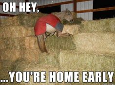 Oh hey, you're home early