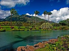 Maui Tropical Plantation  Photograph by Rob DeCamp    A Maui tropical plantation is seen from across a blue green pond: palm trees swaying in the breeze, blue skies with fluffy white clouds, and lush hillsides rising into the background make this scene almost cliche–but it is so beautiful that cliche is replaced by a sense of place and longing to be there.    Plantations like this dot the coast along the West Maui Mountains and fill the hillsides of Haleakala. Maui majors in sugar cane, but…