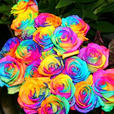 I would die if my boyfriend got me these!!! #pretty I want some rainbow roses |Pinned from PinTo for iPad|