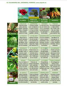 Calendario del jardinero Febrero