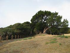 見晴らしのいい梶取崎は、気分転換に散策するのにいい場所です。