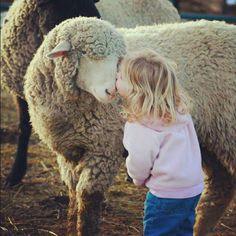 awwww she reminds me of my childhood :) I always loved farm animals and never wanted them sacrificed <3