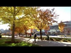 Overview of Brigham Young University