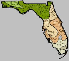 Florida Gardening Made Simple - this is a great site that includes zone maps, planting calendars, etc.