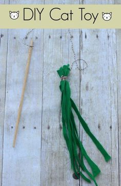 All cats love things on strings! Here is a quick and easy string toy for your cat to enjoy!