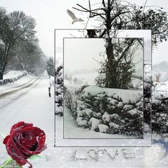 I`ve been waiting for you all winter. Frame from imikimi.com. You can put your own photo in for free if you click on it.