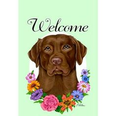 Tomoyo Pitcher Welcome Flowers Garden Flag - Labrador Retriever