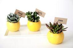 segnaposto piante grasse #sposifaidate