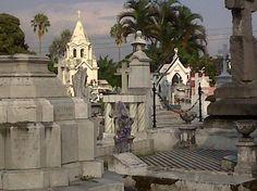 Cementerio - Los Ilustres