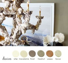 From one room to a whole house...g #devinecolor #colorpalette