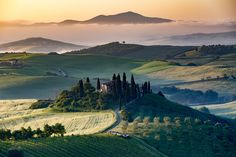 The Tuscan Landscape - Val d'Orcia, Tuscany, Italy. A lonely farmhouse with cypress and olive trees, rolling hills.