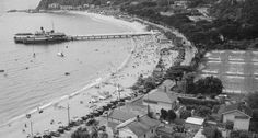 View from the top of McKenzie track Eastbourne about 1930 . 2 June, Bays, Deep Water, What Is Like, New Zealand, Postcards, Beaches, Track, Top