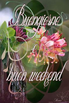 Buon sabato immagini con i fiori 2 saludos good for Buon weekend immagini simpatiche