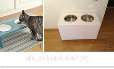 1000 id es sur le th me jouets pour chat faits maison sur - Panier pour chien fait maison ...