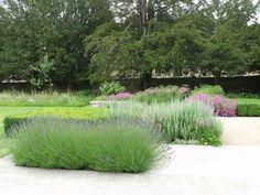 Rows/gridding as a subtle alt to the meadows-ness of north front. Contemporary Garden Design, Contemporary Landscape, Back Gardens, Small Gardens, Flower Landscape, Landscape Design, Formal Gardens, Outdoor Gardens, Meadow Garden