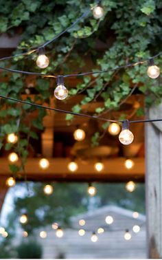 We'll be hanging the festoon lights in the garden now the wedding is done, bring on summer BBQs!