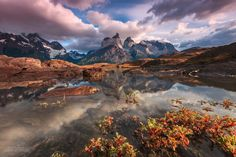 south america chile patagonia national park torres del paine national park andes mountains