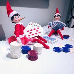 Seems like someone is s card shark.  Estelle's two Shelf Elves, Lindsay and Tristan #ShelfElf