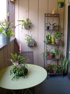 small balcony table & plants