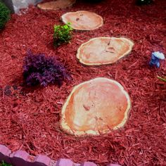 """""""Stepping Stones"""" Made from an old cedar tree we had to cutt down! No stepping on the flowers!!"""