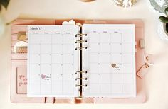 Websters Pages A5 Platinum Rose  Filofax Inserts Printable Monthly Planner Inserts 2018 A5 / Monatsübersicht