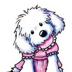 "Matted Original Art MALTESE Dog ACEO Illustration: Artist signed & dated ORIGINAL Maltese dog breed Art by children's book author / illustrator Kim Niles. This work is entitled ""Girlie Girl Maltese"" and is available through the artist's online gallery ""KiniArt"" for  $50.00 (USD + s/h), via Etsy."