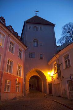 Street scene in the Old Town of Tallinn at night, Estonia