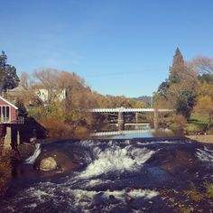 The Meander River in Deloraine. #deloraine #tasmania #discovertasmania Image Credit: anamnesis30