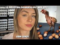 Erin Janus - La industria del huevo en 5 min. Ep 1 - YouTube