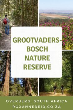 Ever wonder what Grootvadersbosch Nature Reserve is like? Find it between Swellendam and Heidelberg in the Western Cape. Discover everything you need to know from where to find it, the climate, the Grootvadersbosch forest and things to do in Grootvadersbosch like hiking, mountain biking on the reserve and the adjoining Grootvadersbosch Conservancy. Learn about Grootvadersbosch accommodation in self-catering cottages, Grootvadersbosch camping and Grootvadersbosch glamping. #SouthAfrica Slow Travel, Travel Tips, Built In Braai, Stuff To Do, Things To Do, Self Catering Cottages, Forest Road, Go Hiking, Bike Trails