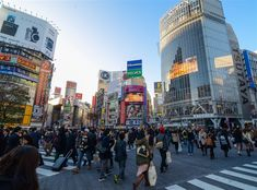 Crowds of people walk across the busy intersection of Shibuya Crossing