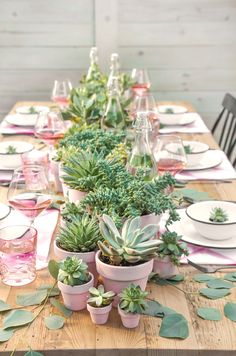 DIY PARTY | Succulent Centerpiece + Berry Champagne Popsicles