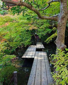 京都の南禅寺塔頭の天授庵 これからの紅葉もまだあります。回遊式庭園も美しいー ステップや道好きの私は、こんな写真多めです。別名 ゆきみちと命名されてます #lovers_nippon#loves_nippon#japan_daytime_view#ptk_japan#ig_nihon#icu_japan#cools_japan#wu_ja