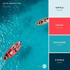 Creative Color Palettes                                                                                                                                                     More