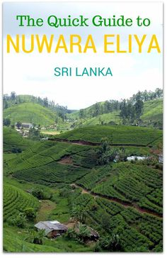 Our guide to things to do in Nuwara Eliya, Sri Lanka, attractions, best hotels in Nuwara Eliya, where to eat and how to get from Kandy to Nuwara Eliya. Everything you need to know! http://www.wheressharon.com/asia-with-kids/things-to-do-in-nuwara-eliya/