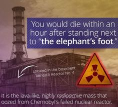 """Like a real-life Medusa, the """"elephant's foot"""" at Chernobyl can kill you just by… Chernobyl Nuclear Power Plant, Chernobyl Disaster, Nuclear Energy, Chernobyl 1986, Discovery Channel Shows, Advantages Of Solar Energy, Nuclear Reactor, Nuclear Disasters, Solar Energy System"""