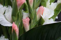 Bouquet de fleurs #composition #glaïeul