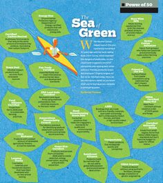 Decoding green certification labels.