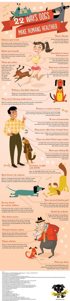 The good pups at Cheewie Says decided to compile all the ways dogs help humans' health and create an adorable infographic about it! Here are 22 ways dogs can make humans healthier that you can point to (literally if you print this out) when cat people ask Dog Care Tips, Pet Care, Training Tips, Dog Training, Dog Chart, Dog Information, Dog Facts, Cat People, Pet Health