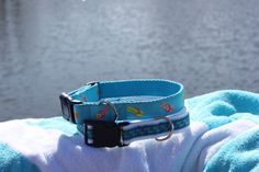 whales and flip flops dog collars