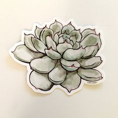 Watercolor Succulent Vinyl Sticker by SpycyShark on Etsy Laptop Stickers, Cute Stickers, Watercolor Succulents, Outdoor Stickers, Car Window Decals, Planting Succulents, Succulent Plants, Original Image, Watercolor Paintings