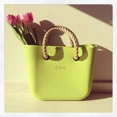 #obag #fullspot Tulips