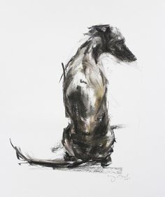 Whippet Sitting pastel sketch 2