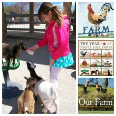 Some fun books about farm life for children and resources to find a farm to visit near you!