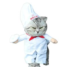 Funny Cat Costume Chef Style Clothes For Dogs Halloween Cosplay Suit For Cats Funny Pet Clothing Puppy Christmas New Year Outfit Dog Halloween, Halloween Cosplay, Halloween Costumes, Salem Halloween, Halloween Christmas, Halloween 2020, Halloween Cards, Cat Lover Gifts, Cat Gifts