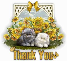 gif thank you pictures - Bing Images Good Morning Greetings, Good Morning Good Night, Good Morning Quotes, Morning Images, Thank You Pictures, Thank You Images, Moving Pictures, Thank You Greetings, Thank You Cards