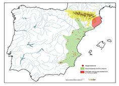 Zona verde: área de distribución del arte levantino