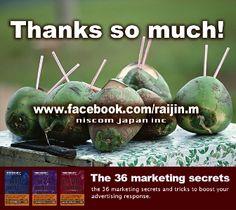 Raijin Marketing Japan Style 9