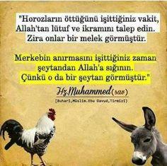 #hadis  corek-otu-yagi.com   (notitle) Muhammed Sav, Good Sentences, Positive Psychology, Hadith, Religious Art, Loneliness, Good Advice, Cool Words, Allah